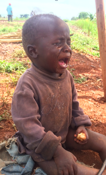While this child's father was working he was left all day with a chunk of sugar cane to much on.